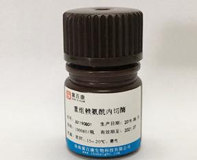 优德w88app赖氨酰内切酶